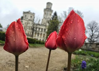 The beauty of the castle and gardens in any weather